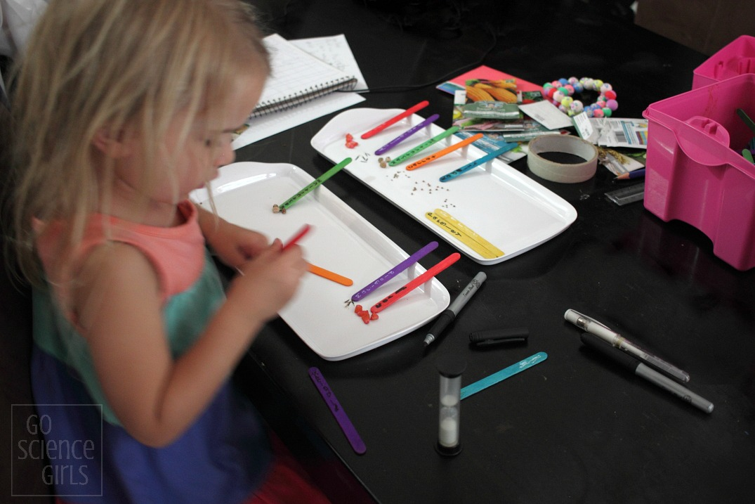 Labelling craft stick seed markers