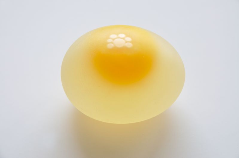 A semi-naked egg, that just needs the shell to be washed away