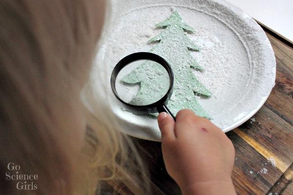 Examining the salt crystals