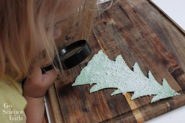 Studying the salt crystals