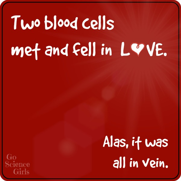 Two blood cells met and fell in LOVE. Alas, it was all in vein. Hahahaha! (There are loads more funny science jokes for kids on here - hilarious!)