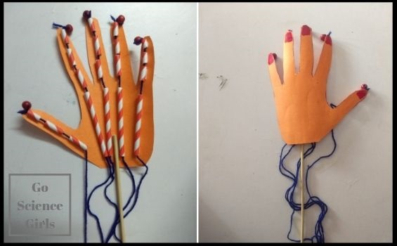Articulated hand puppet