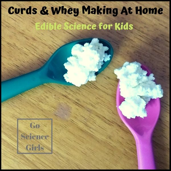 Curds & Whey - edible food science for kids. Perfect for Little Miss Muffet
