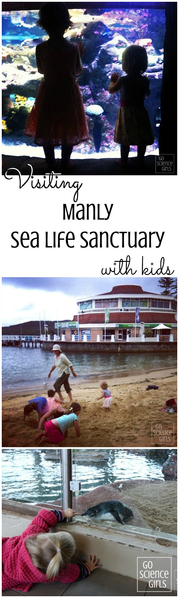 Visiting Manly Sea Life Sanctuary with kids - a review by Go Science Girls