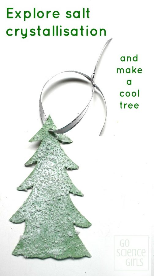 Make a cool crystal tree - fun science for Christmas or winter