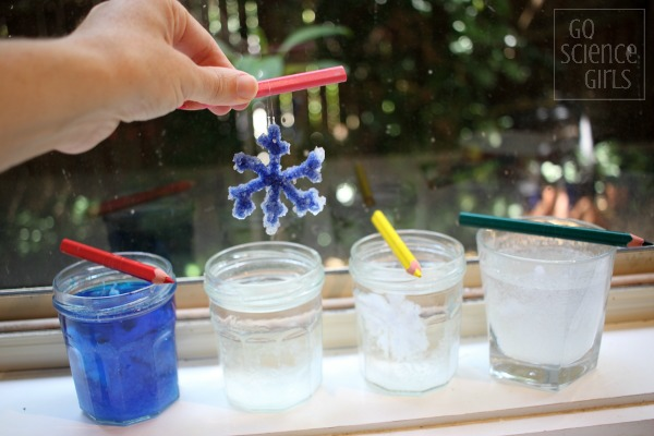 Growing borax crystal snowflakes