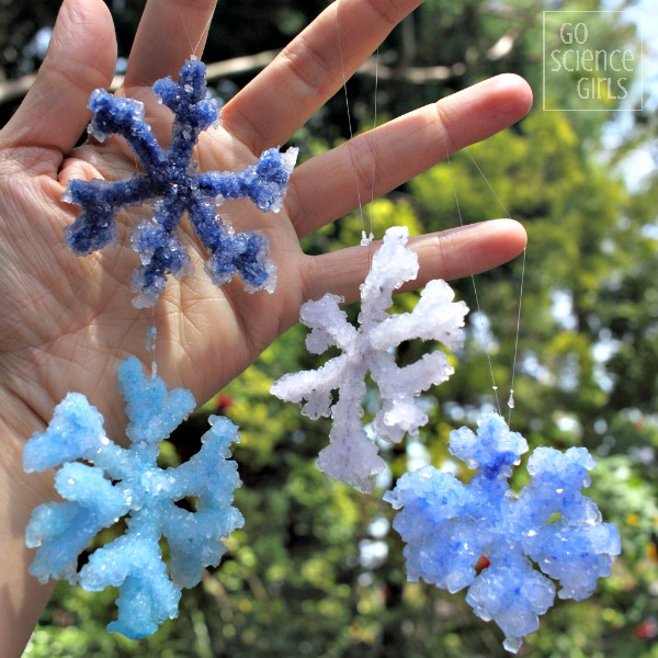 Science for kids how to make crystal snowflakes