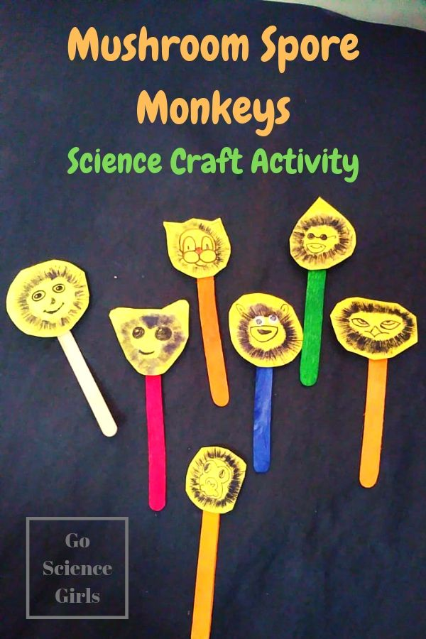 Mushroom monkeys! Cute science craft for kids, where kids can learn about mushroom biology and spore prints