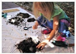 Examining dirt and what lives in it