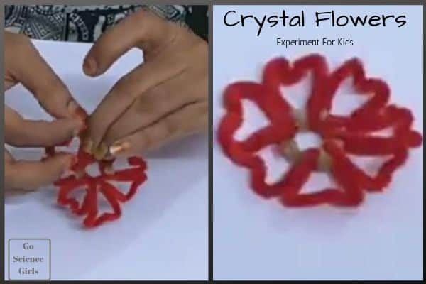 Crystal flowers for kids