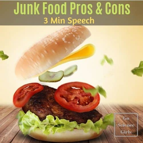 Junk Food Pros Cons 3 minute speech essay