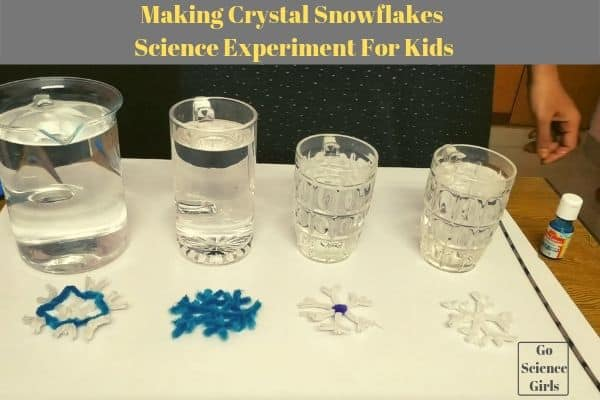 Making Crystal Snowflakes Science Experiment For Kids