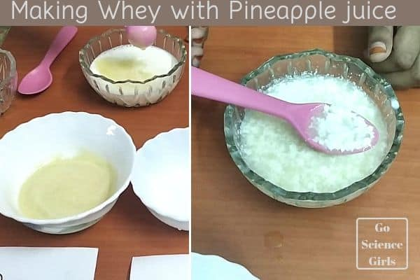 Making whey with pineapple juice