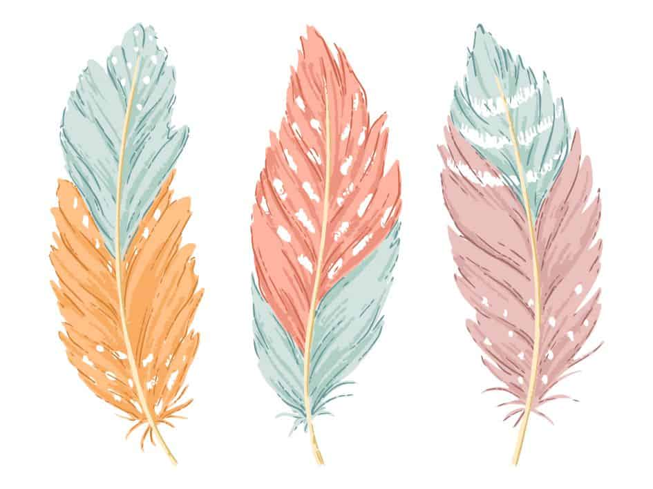 30+ Stunning Turkey Feather Templates (Free Download)
