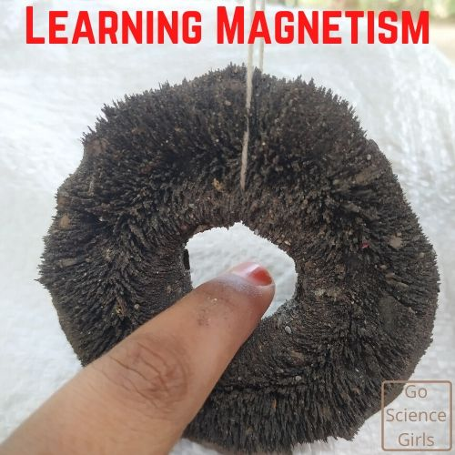 Easy Experiments to Introduce Magnetism to Kids