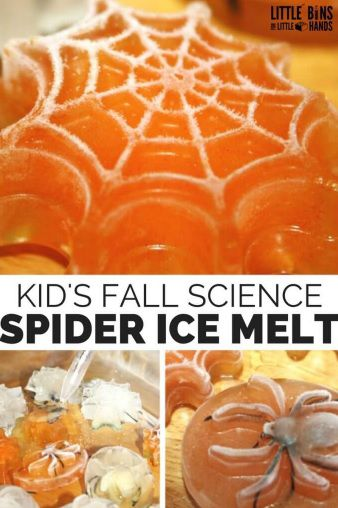 Kids fall science - spider ice melt