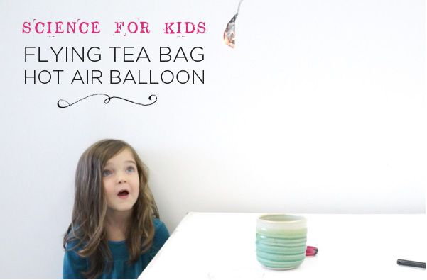 Flying Tea Bag - Hot Air Balloon