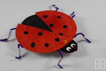 Ladybug paper craft for kids