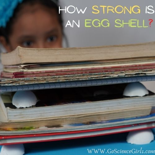 How Strong is an Egg Shell