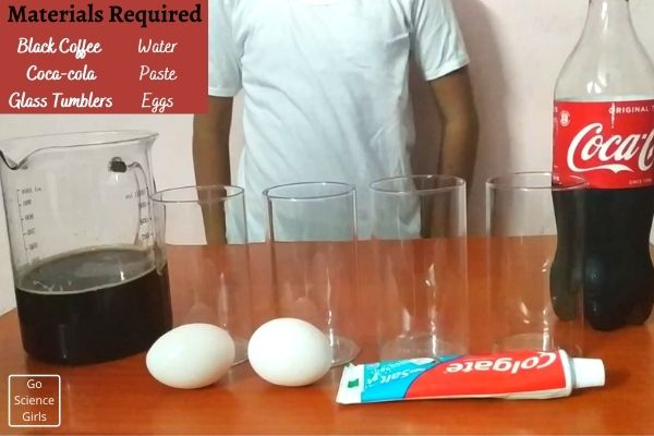 Material Required For Egg And Toothpaste Experiment
