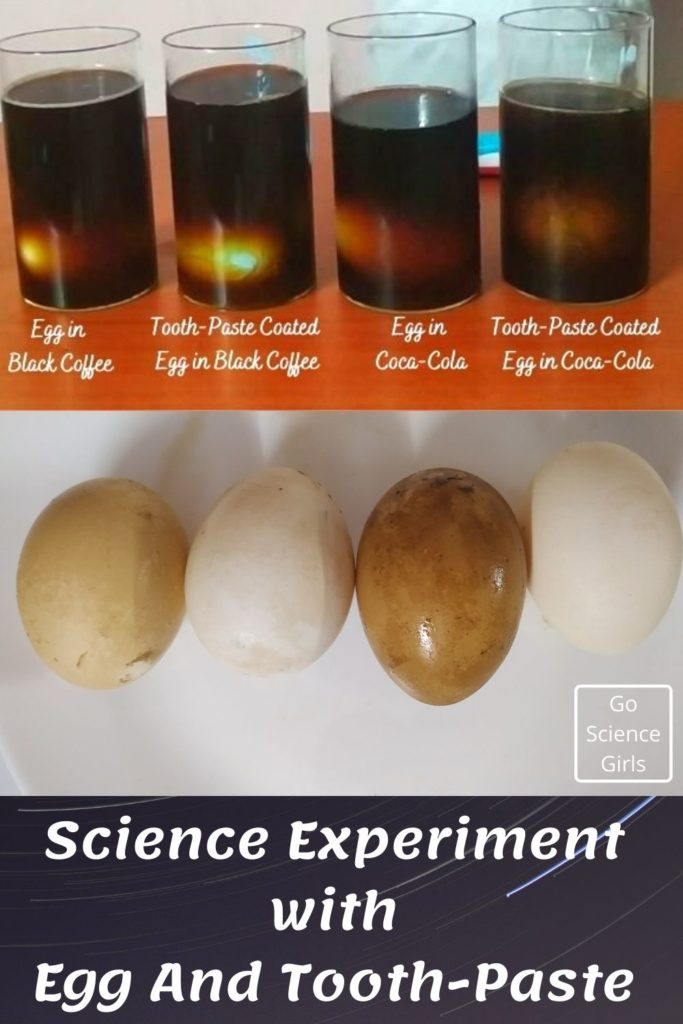 Science Experiment With Egg And Tooth-Paste