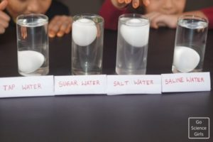 Density Science Experiment for Kids