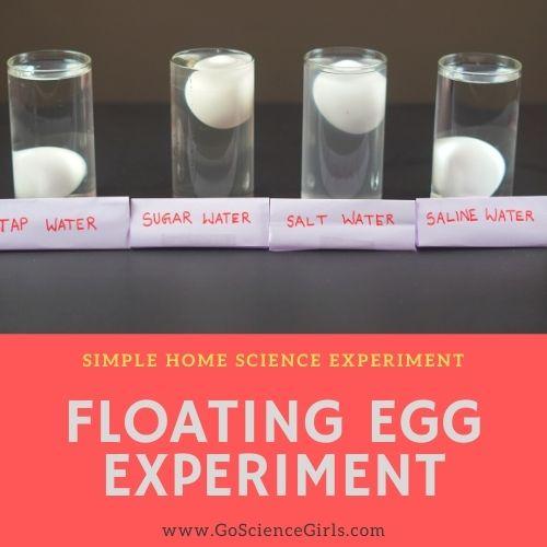 Floating Egg Density Science Experiment