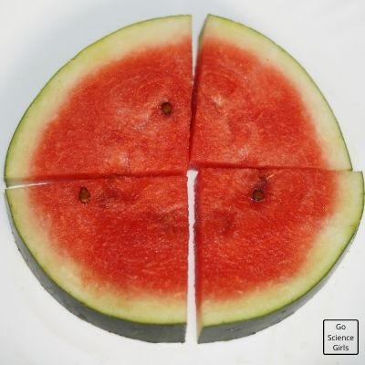 Four Parts In Watermelon