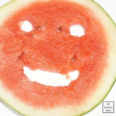 Smiley In Watermelon