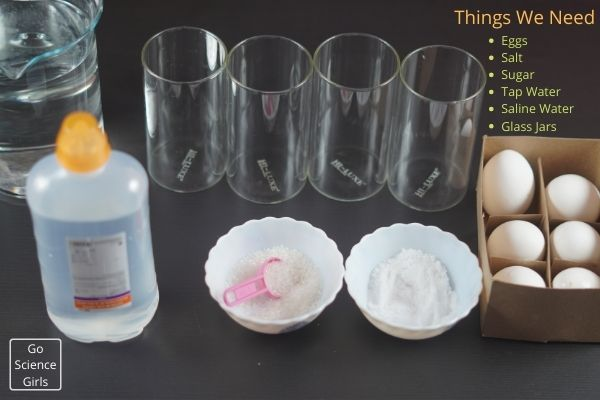Things We Need Floating Egg Experiment