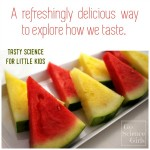 Exploring Taste with Watermelon