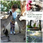 Visiting Wildlife Habitat Port Douglas with Kids