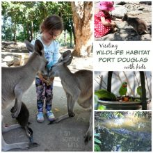 Visiting Wildlife Habitat Port Douglas with Kids