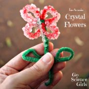 Borax Crystal Flowers
