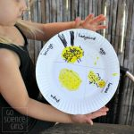 Ladybird Life Cycle Craft: Learning about Metamorphosis