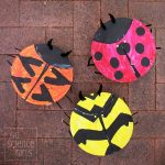 Paper plate ladybird craft - and learn about 3 different ladybird species!