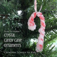 Crystal Candy Canes – fun Christmas science project